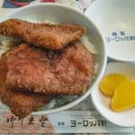 92254202 - ヨーロッパ軒ソースかつ丼/800円(税別)