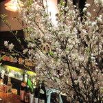 瑠璃庵 - 季節によって雰囲気も変わります