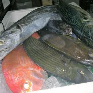 長崎直送の新鮮な魚を毎日そ入荷して、その日に捌きます!!