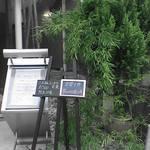 924658 - 竹やぶの店 入り口