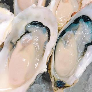 ★〈9月10日〉岩手・大槌産の牡蠣、入荷しました!