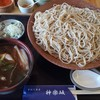 手打ち蕎麦 神楽坂 - 料理写真:とりせいろ大盛