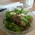 アンジュミニョン - 料理写真:サラダ