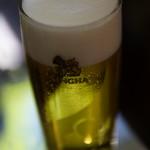 92759494 - シンハービール樽生
