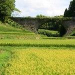 おちかラーメン - 通潤橋も見学してきました。手前の黄色に見えるのは、花ではなく稲穂です。