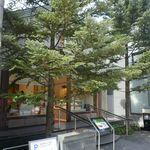 92788506 - 先日、猛烈な暑さの京都に上洛しました。ちょうど北山エリアに行く機会があったので、「マールブランシュ 北山本店」へ。