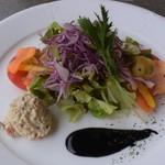 92819341 - 彩り新鮮野菜サラダ