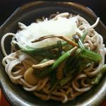 レストラン雲水 - おろし山菜蕎麦