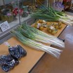 道の駅・上州おにし - 茄子も葱も100円です。