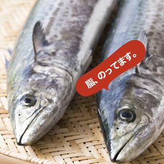 淡路島の秋を代表する食材【裏旬サワラ】