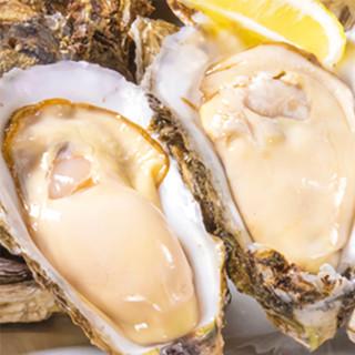 ◆人気の食べ比べは真牡蠣・岩牡蠣とご用意しております◆