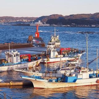 横須賀長井漁港仲卸直営さかな食堂