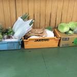 お食事処 波布 - 野菜達