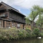 鮨処美好 - 小野川と小江戸   そして白鳥