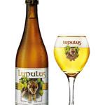 BEER BOUTIQUE KIYA - 誰が飲んでもおいしい!ルプルス醸造所の看板商品。