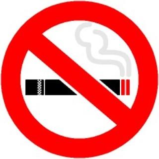 終日禁煙店