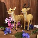 鹿野 - 店内には鹿もいます♪