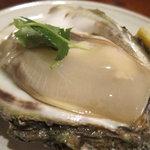 居酒屋しゅん - 岩牡蠣