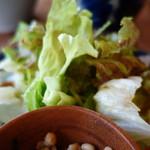 シェルタークコ カフェ&ギャラリー - 葉野菜