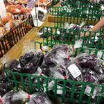 93151273 - 野菜コーナー