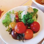 メインダイニング イル サーリチェ - サラダは新鮮でとっても美味しかったです!