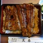 天春 - 天然鰻。5,500円。9/3、旬です。