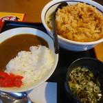山田うどん食堂 - 料理写真:かき揚げうどん+ミニカレー丼