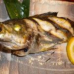 二本松 - 料理写真:いさきの塩焼き