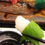 玄海鮨 - イカ  甘い