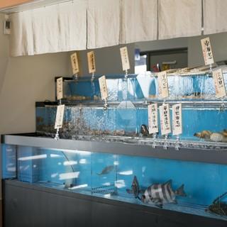 店内いけすには、新鮮な魚介類の数々!