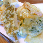 935125 - 優しい野菜天ぷら