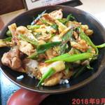 とん丼亭 - 料理写真:とん丼(中) \520