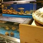 魚貝三昧 げん屋 - 2人とも水槽の見た事ない貝が気になります