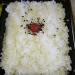 TROTANOY - シッカリ詰まったご飯