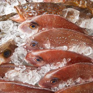 男鹿半島直送!!その日一番美味しい魚をご提供します★
