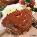 アリーブ - 通称 エルメス蟹(ヒラガニ)