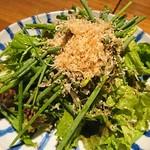 トリカゴ - ネギとジャコのサラダ