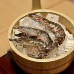 お籠り個室と彩りなだれ寿司 瑞Kitchen - 気絶した車海老