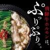 桜肉寿司と飛騨牛もつ鍋 TATE-GAMI - 料理写真: