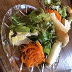 93964089 - 自家菜園の朝採り野菜のサラダ