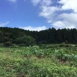 のんびり山 - 周りは畑
