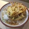 そばの神田 東一屋 - 料理写真:野菜かき揚げ蕎麦
