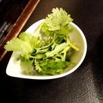 175°DENO担担麺 - パクチー増量