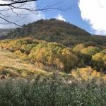 田山ドライブイン - おまけ…八幡平の紅葉が始まりました