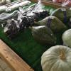ひまわり市場 - 料理写真: