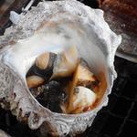 カキ小屋 - あかにし貝