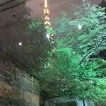 94411199 - 庭園の無効に東京タワー