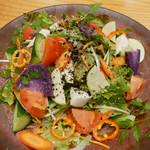 京Apollo食堂 - (撮影 20181012)色とりどりの野菜サラダ。