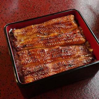 うなぎ 桜家 - 料理写真:うな重一匹