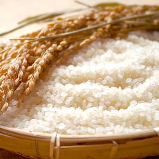 ★拘り抜いたお米を使用-。「150円」でライス食べ放題♪